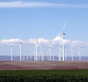 Klondike_Wind_Farm